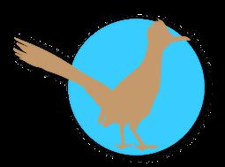roadrunner-bird-blue